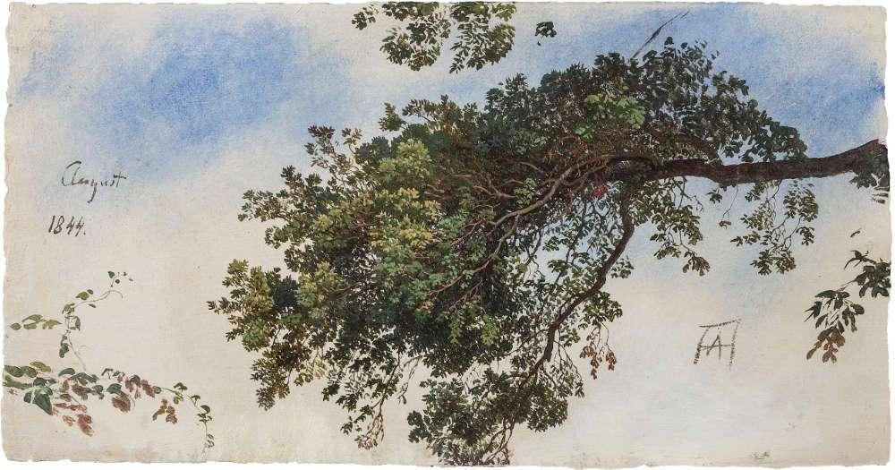 Andreas Achenbach, Zweige eines Laubbaums, Studie, Tivoli 1844, Öl auf Papier (Privatsammlung © Museum LA8 Baden-Baden)