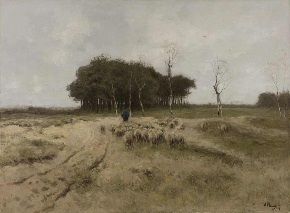 Anton Mauve, In der Heide bei Laren, 1887, Öl auf Leinwand, 77 × 104 cm (Rijksmuseum, Amsterdam)
