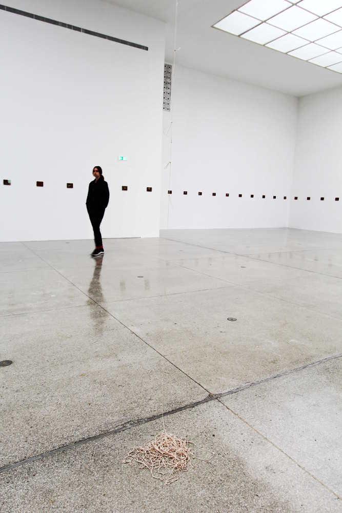 Avery Singer in der Ausstellung Francis Alÿs, Le temps du sommeil, 14.11.2016, Secession, Wien, Foto: Alexandra Matzner.