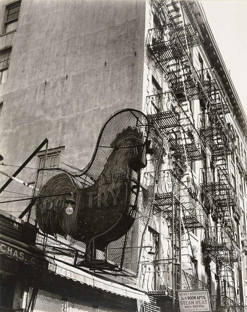 Berenice Abbott, Poultry Shop, Lower East Side, New York City, 1937 © Berenice Abbott Archive