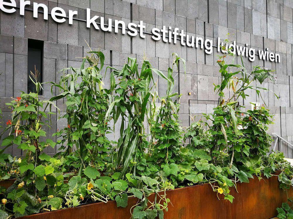 Christian Philipp Müller, Drei-Schwestern-Korridor, Ausstellungsansicht mumok, Foto: Alexandra Matzner, ARTinWORDS.