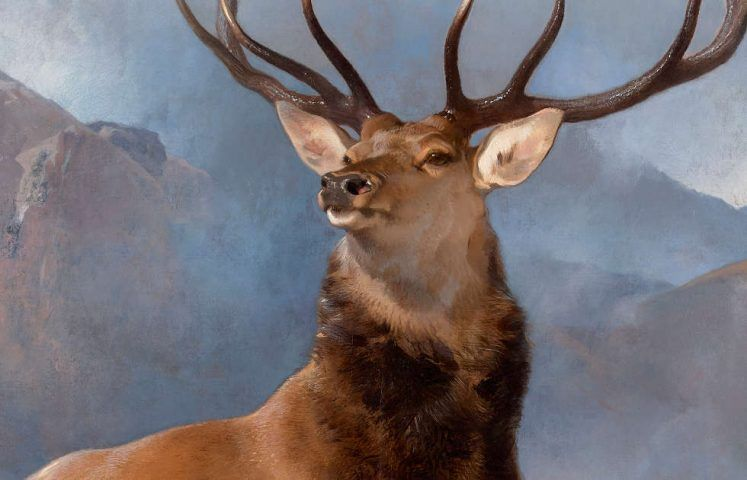 Edwin Landseer, The Monarch of the Glen, Detail, um 1851, Öl/Lw, 163.8 × 168.9 cm (Purchased by the National Galleries of Scotland as a part gift from Diageo Scotland Ltd, with contributions from the Heritage Lottery Fund, Dunard Fund, the Art Fund, the William Jacob Bequest, the Tam O' Shanter Trust, the Turtleton Trust, and the K. T. Wiedemann Foundation, Inc. and through public appeal 2017 (NG 2881) © National Galleries of Scotland)