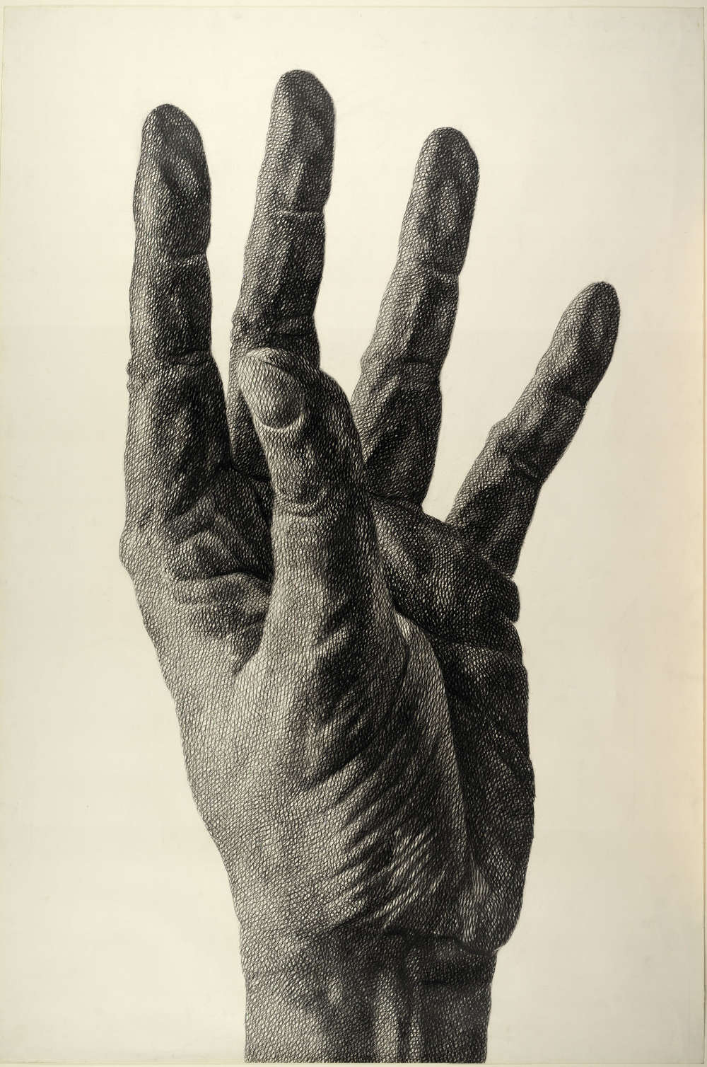 Florentina Pakosta, Aufstrebende Hand, 1980 (Albertina, Wien © Bildrecht, Wien, 2017)