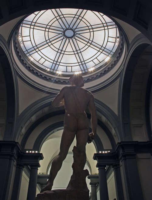 Galleria dell'Accademia, Tribuna, Blick in die Kuppel und Michelangelos David von hinten