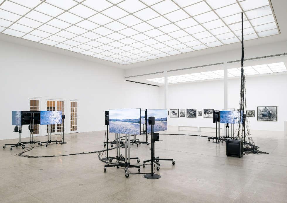 Gerard Byrne und Sven Anderson, A Visibility Matrix (2), 2018, Ausstellungsansicht Secession 2019, Foto: Iris Ranzinger