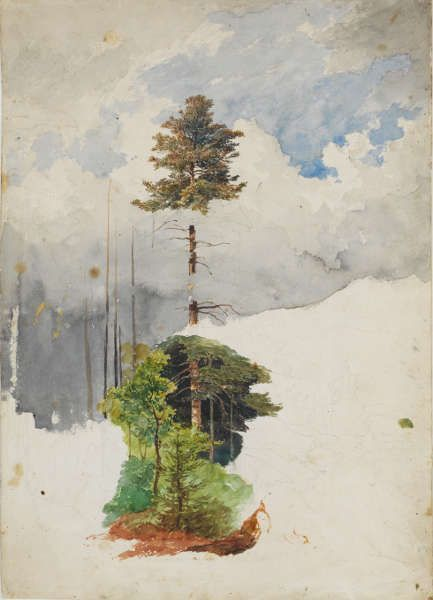 Heinrich Reinhold, Baum- und Wolkenstudie, um 1820, Aquarell (Ausschnitt) (© Klassik Stiftung Weimar, Graphische Sammlungen)