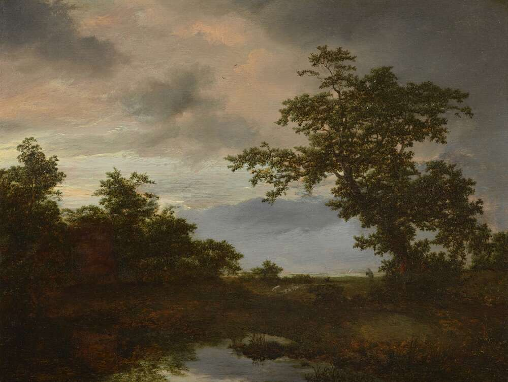 Jacob van Ruisdael, Baumlandschaft mit Teich, um 1649, Öl auf Eichenholz (Dauerleihgabe aus Privatsammlung, Wallraf-Richartz-Museum & Fondation Corboud)