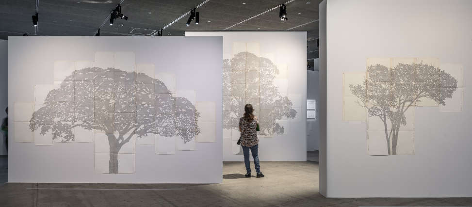 Johanna Calle, Sangregado, série Perímetros, 2014, Ausstellungsansicht Fondation Cartier 2019, Foto: Luc Boegly