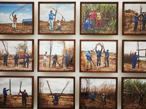 Jonathas de Andrade, ABC da Canna, Detail, Ausstellungsansicht mumok, Foto: Alexandra Matzner, ARTinWORDS.