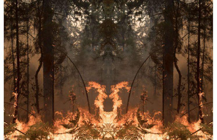 Julius von Bismarck, Fire with Fire, 2020, Courtesy the artist; alexander levy, Berlin; Sies+Höke, Düsseldorf and Marlborough Gallery, London/New York © the artist / VG Bild-Kunst, Bonn 2020