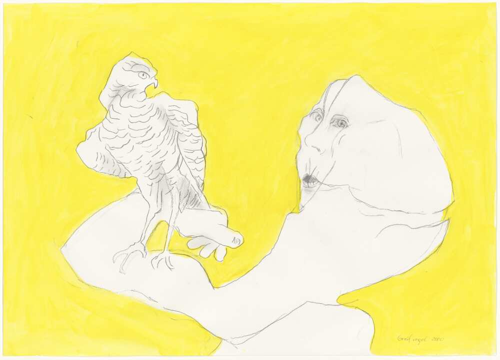 Maria Lassnig, Greifvogel, 2000 (© 2016 Maria Lassnig Stiftung)