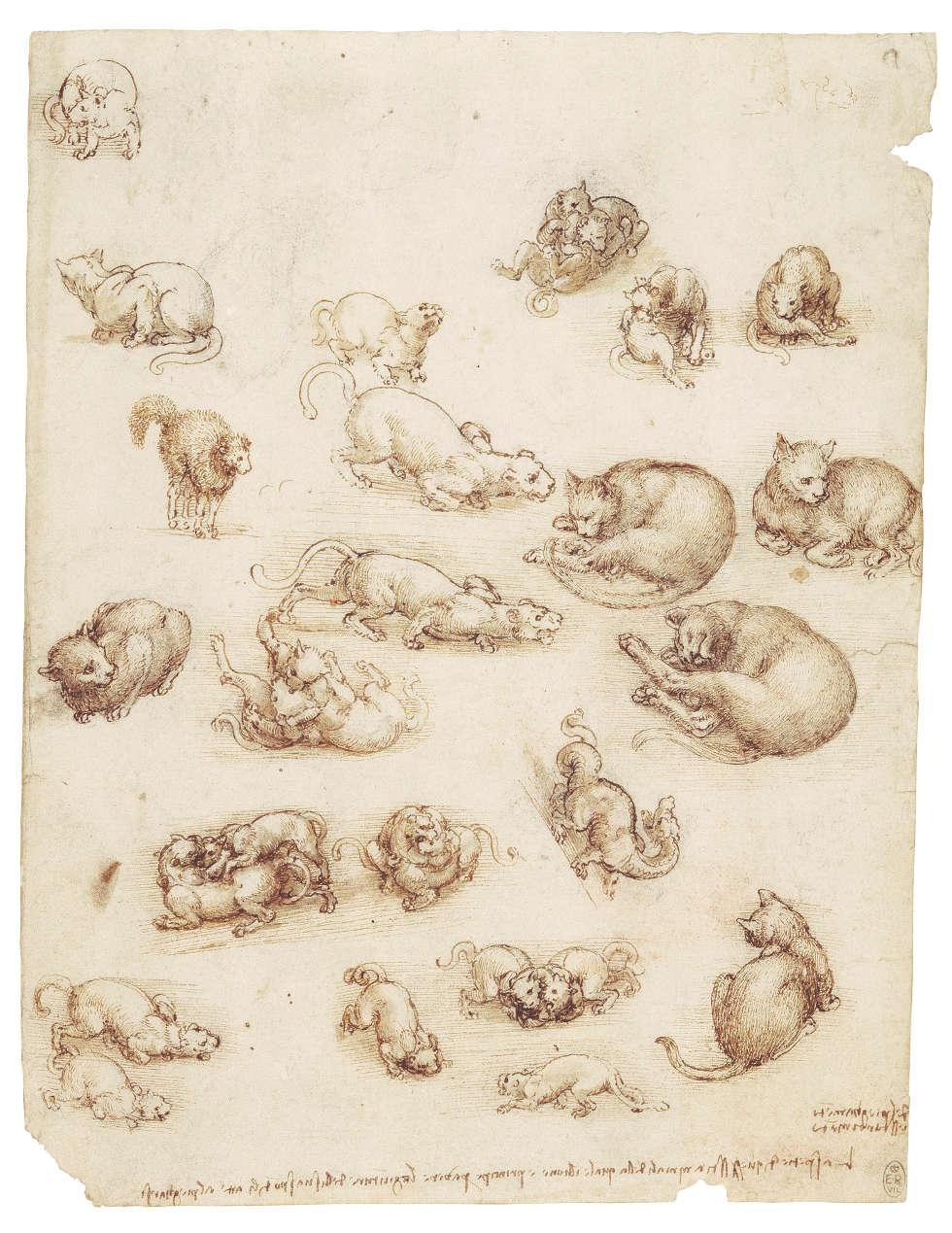 Leonardo da Vinci, Katzen, Löwen und ein Drache, um 1513–1518, Feder und Tusche mit Lavierung über schwarzer Kreide, 27 x 21 cm (Blattmaß) (Royal Collection of the Queen, Inv.-Nr. RCIN 912363)