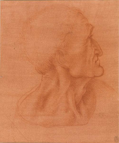 Leonardo da Vinci, Studie für den Kopf des Judas, um 1494–1498, Rote Kreide auf rot vorbereitetem Papier (Royal Collection Trust / © Her Majesty Queen Elizabeth II)