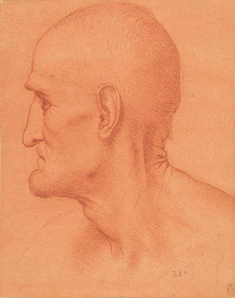 Leonardo da Vinci (zg.), Studie für den Kopf des hl. Simon, um 1494, rote Kreide auf rot gefärbtem Papier (Royal Collection Trust / © Her Majesty Queen Elizabeth II)