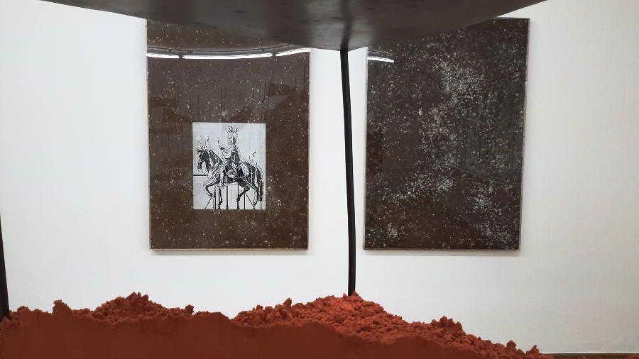 Angelika Loderer, Pleurotus, Installationsfoto: Alexandra Matzner, ARTinWORDS.