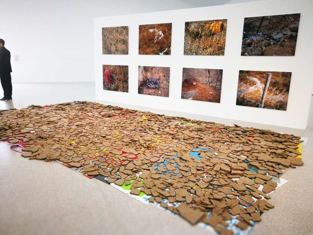Lois Weinberger, Wüstung, Ausstellungsansicht mumok, Foto: Alexandra Matzner, ARTinWORDS.