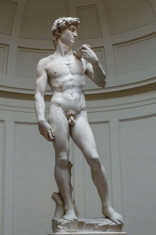 Michelangelo, David, September 1501–Mai 1504, Carrara-Marmor, 514 cm (Florenz, Galleria dell'Accademia)