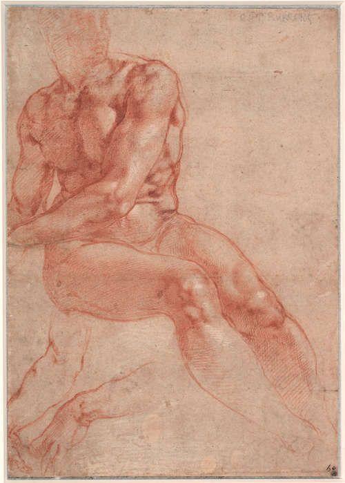 Michelangelo, Studien für einen sitzenden Männerakt (Ignudo), 1508–1512, Rote Kreide, Blatt 26.8 x 18.8 cm (Graphische Sammlung Albertina, Wien, 120 SL.6.2017.46.5)