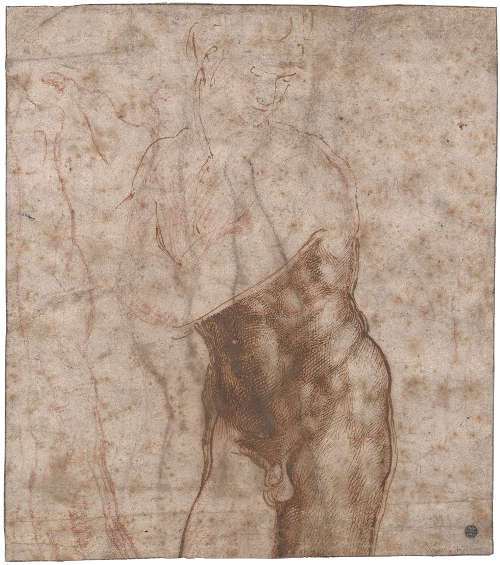 Michelangelo, Studien für eine Statue des Auferstandenen Christus (recto), 1518 (Privatsammlung)