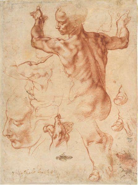 Michelangelo, Studien für die Libysche Sibylle (recto), um 1510/11, Rote Kreide, Blatt 28.9 x 21.4 cm (Metropolitan Museum of Art, New York, Purchase, Joseph Pulitzer Bequest, 1924 24.197.2)