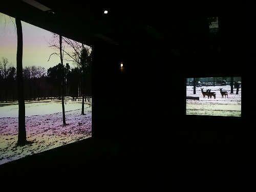 Miroslaw Balka, Winterreise, Ausstellungsansicht mumok, Foto: Alexandra Matzner, ARTinWORDS.