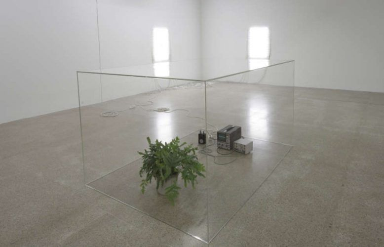 Nina Canell, Ausstellungsansicht mumok 2010