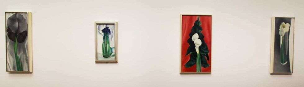 Georgia O'Keeffe, Blumen, 1924-1928, Installationsansicht Bank Austria Kunstforum 2016, Foto: Alexandra Matzner (c) Bildrecht 2016.