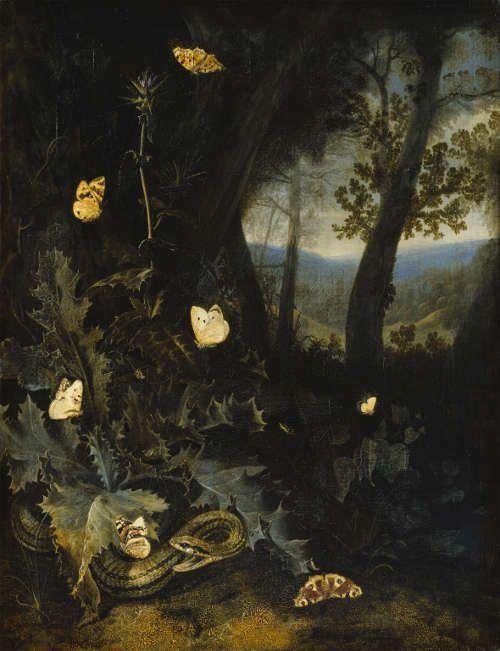 Otto Marseus van Schrieck, Waldboden mit Distel und Schlange, o. J., Öl auf Leinwand, 68,4 x 53 cm, (Staatliches Museum Schwerin / Ludwigslust / Güstro)