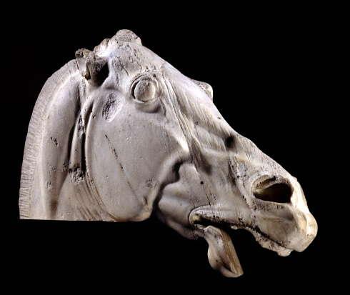 Parthenon, Ostgiebel, Pferdekopf vom Wagen der Selene, Vorderseite (British Museum)