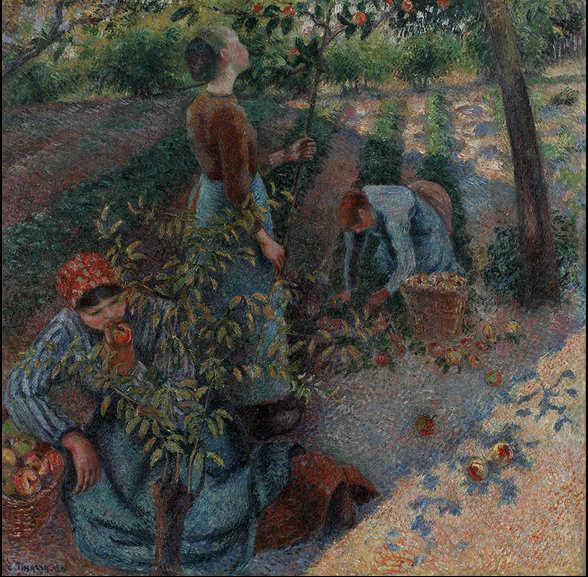 Camille Pissarro, Apfelpflücken, 1886, Öl auf Leinwand, 128 x 128 cm (Ohara Museum of Art, Kurashiki)