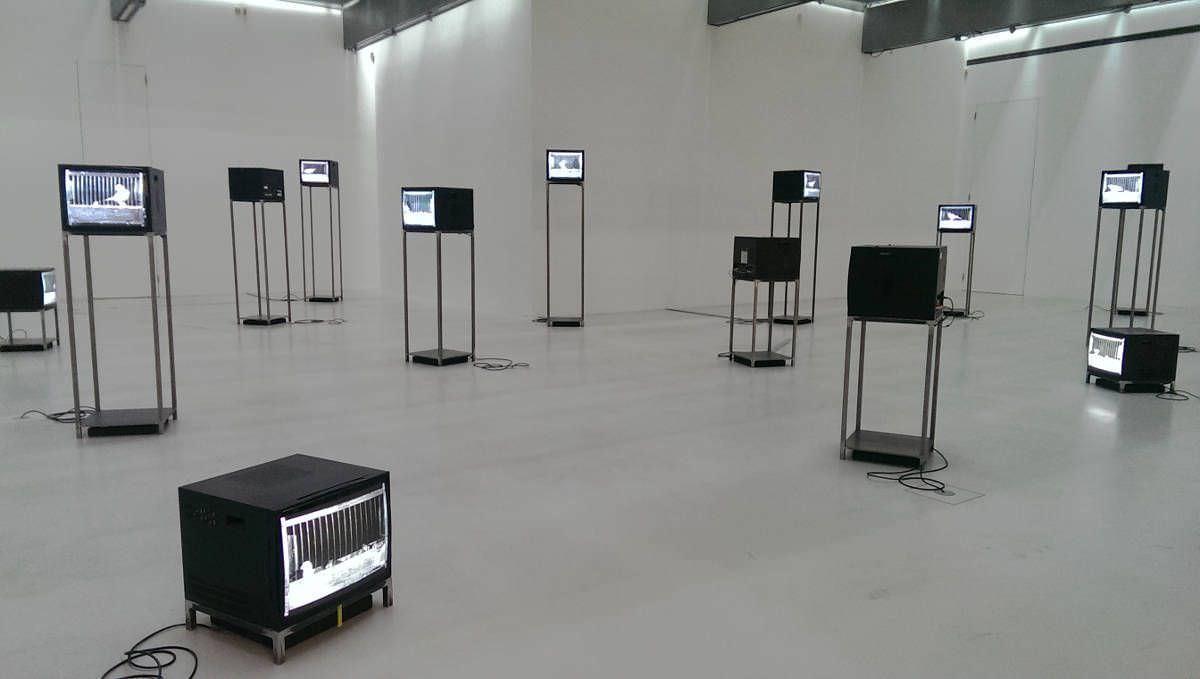 Gabriele Rothemann. Quire. Vierundzwanzig Vogelkäfige, Installationsansicht MUSA, 2017, Foto: Alexandra Matzner, ARTinWORDS.