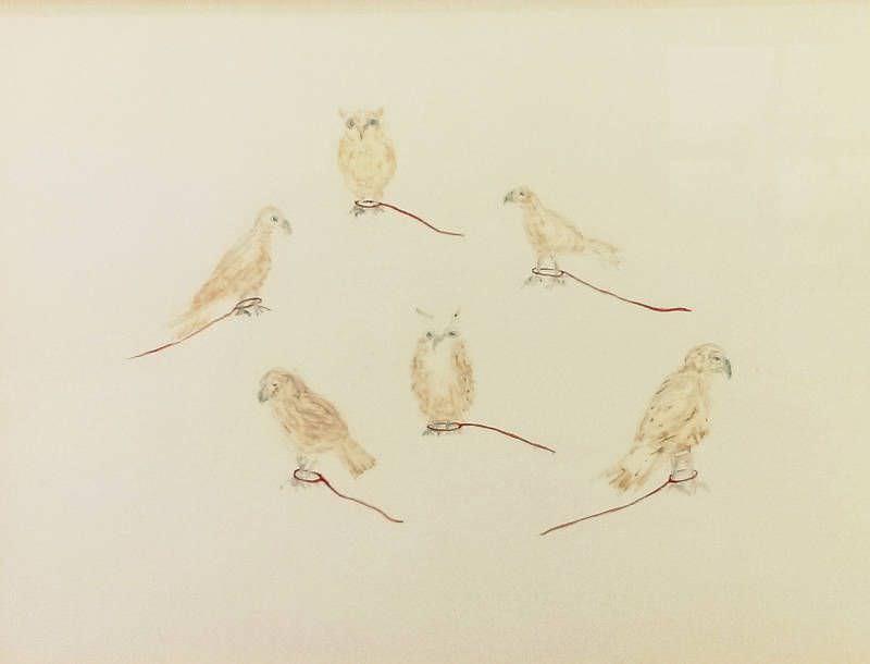 Gabriele Rothemann, Vögel, Foto: Alexandra Matzner, ARTinWORDS.