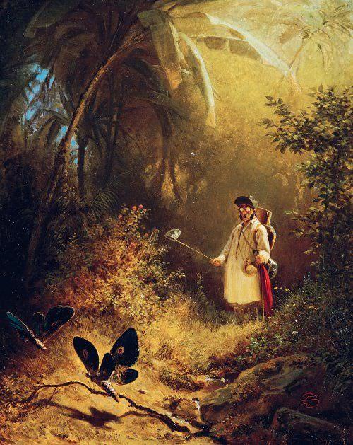 Carl Spitzweg, Der Schmetterlingsfänger, 1840, Öl auf Holz, 31,2 x 25 cm (Museum Wiesbaden, Dauerleihgabe der Bundesrepublik Deutschland)