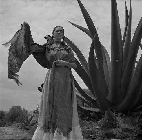 """Toni Frissell, Frida Kahlo (Senora Diego Rivera) bei einer Agave, aufgenommen während eines Fotoshooting für die Vogue, """"Senoras of Mexico"""", 1937 (Negative, nitrate. Library of Congress, Washington, D.C. Library of Congress, Prints & Photographs Division, Toni Frissell Collection, LC-DIG-ds-05052)"""