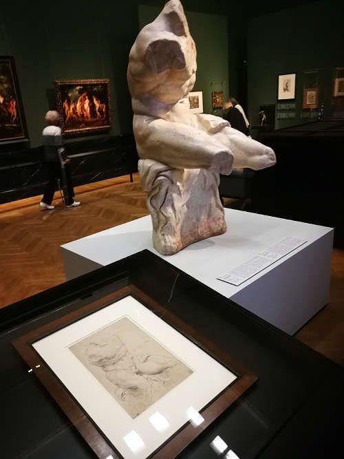 Torso Belvedere, Ausstellungsansicht: Peter Paul Rubens. Kraft der Verwandlung, KHM 2017, Foto: Alexandra Matzner, ARTinWORDS.
