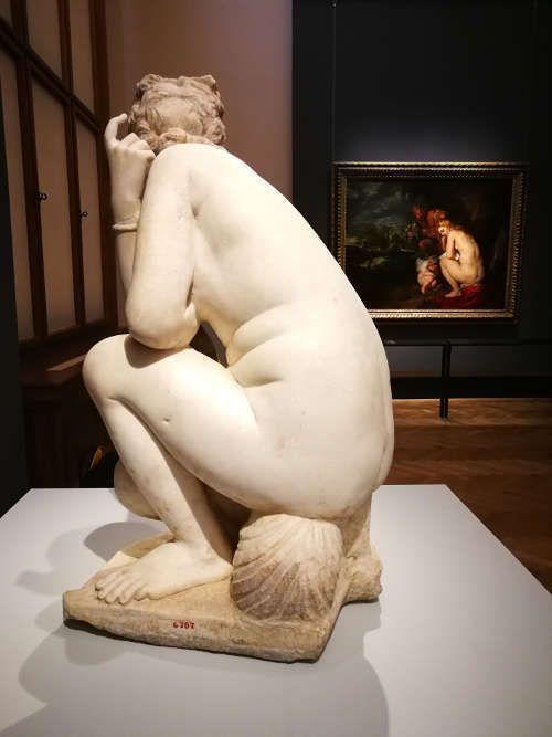 Venus frigida und Rubens, , Ausstellungsansicht: Peter Paul Rubens. Kraft der Verwandlung, KHM 2017, Foto: Alexandra Matzner, ARTinWORDS.