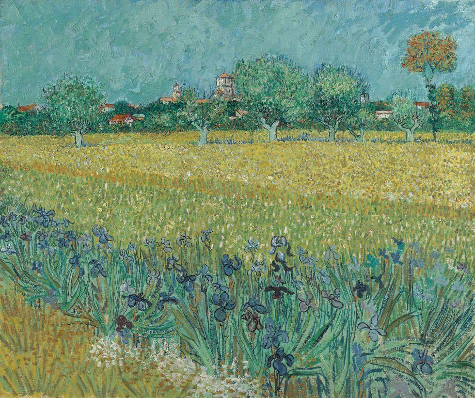 Vincent van Gogh, Feld mit Iris bei Arles, Arles, Mai 1888, Öl/Lw, 54 cm x 65 cm (Van Gogh Museum, Amsterdam (Vincent van Gogh Foundation)