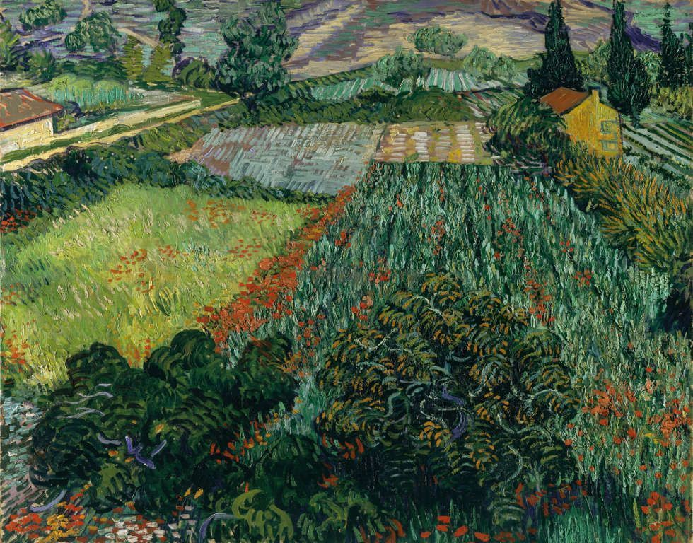 Vincent van Gogh, Mohnfeld, 1889, Öl/w, 72 x 91 cm (Kunsthalle Bremen – Der Kunstverein in Bremen)