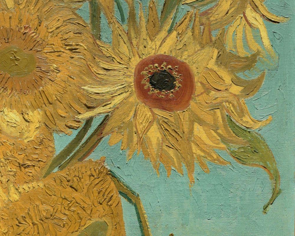 Vincent van Gogh, Sonnenblumen, Detail, 1888 oder 1889, Öl/Lw, 92.4 x 71.1 cm (Philadelphia Museum, The Mr. and Mrs. Carroll S. Tyson, Jr., Collection, 1963, Inv.-Nr. 1963-116-19)