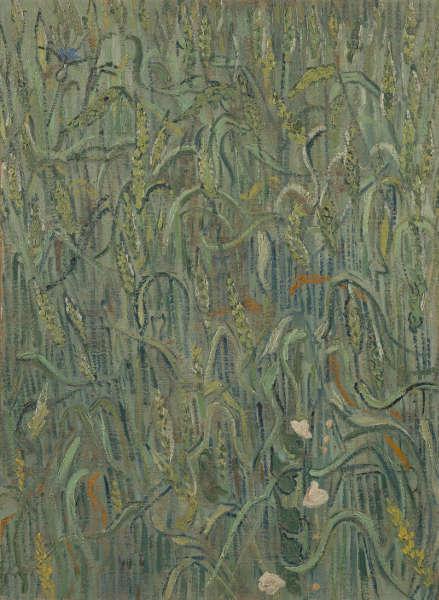 Vincent van Gogh, Weizenhalme, Juni 1890, Öl/Lw, 64 x 48 cm (Van Gogh Museum, Amsterdam)