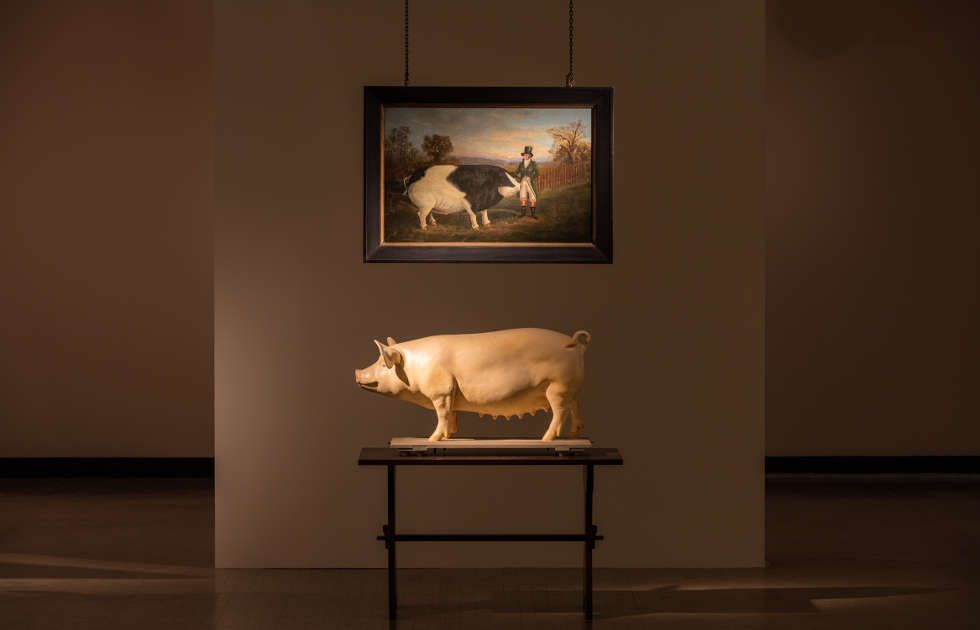 Ydessa Hendeles, Prize, 2015: Detail aus Death to Pigs, 2015–2016, Ausstellungsansicht: Ydessa Hendeles. Death to Pigs, Kunsthalle Wien 2018, Foto: Stephan Wyckoff © Ydessa Hendeles, Courtesy die Künstlerin