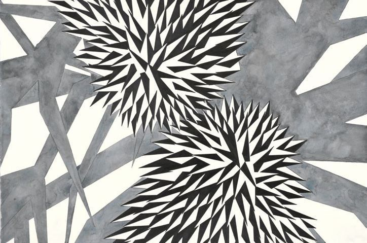 Adriana Czernin, Spikes (Investigation of the Inside), 2011, aus: Martin Janda (Hg.), Adriana Czernin, Berlin 2013, S. 16.