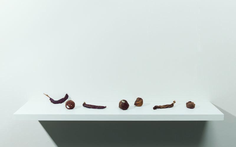 Zoe Leonard, Untitled, 1994–97, Galerie Gisela Capiain, Köln © The Artist, Foto: Lothar Schnepf.