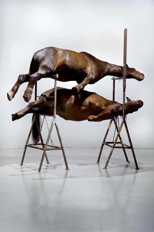 Berlinde De Bruyckere, Les Deux, 2001, Pferdehaut, Polyester, Tischböcke/Horse skin, polyester, trestles, 330 × 550 × 180 cm, Sammlung der Künstlerin/Collection of the artist, Foto/Photo Richard Max Tremblay.