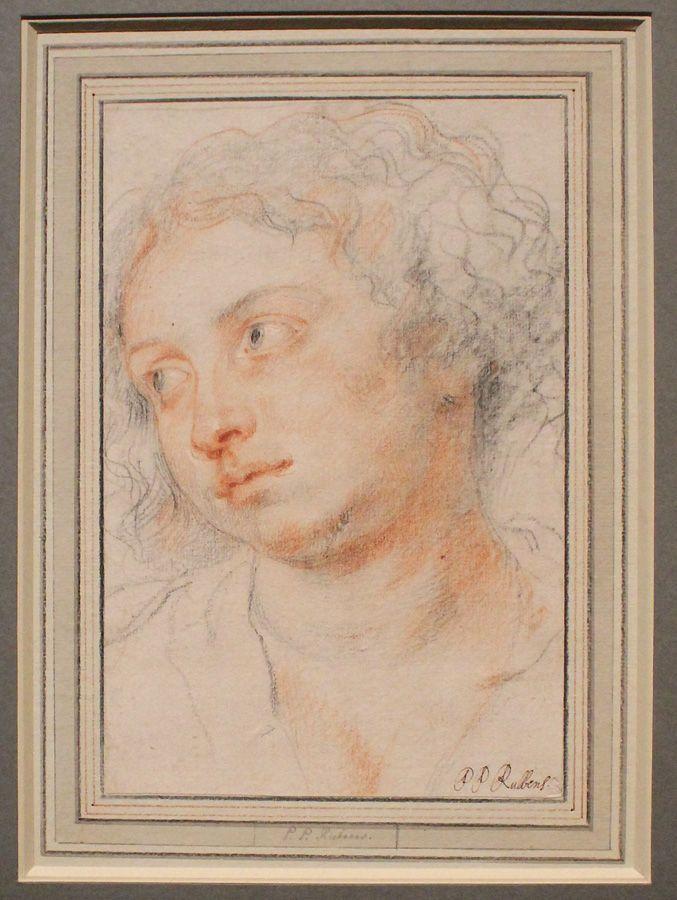 Peter Paul Rubens, Kopf einer jungen Frau nach links, um 1630-31, Kreide, Installationsansicht in der Albertina, Foto: Alexandra Matzner.