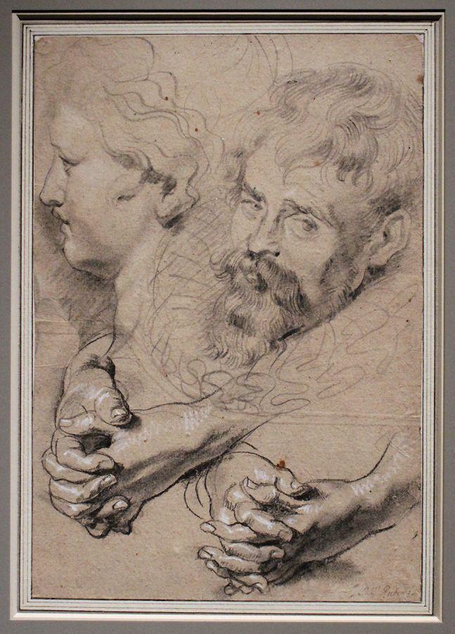 Peter Paul Rubens, Studienblatt mit gefalteten Händen und Köpfen, um 1610, Kreide, Installationsansicht in der Albertina, Foto: Alexandra Matzner.