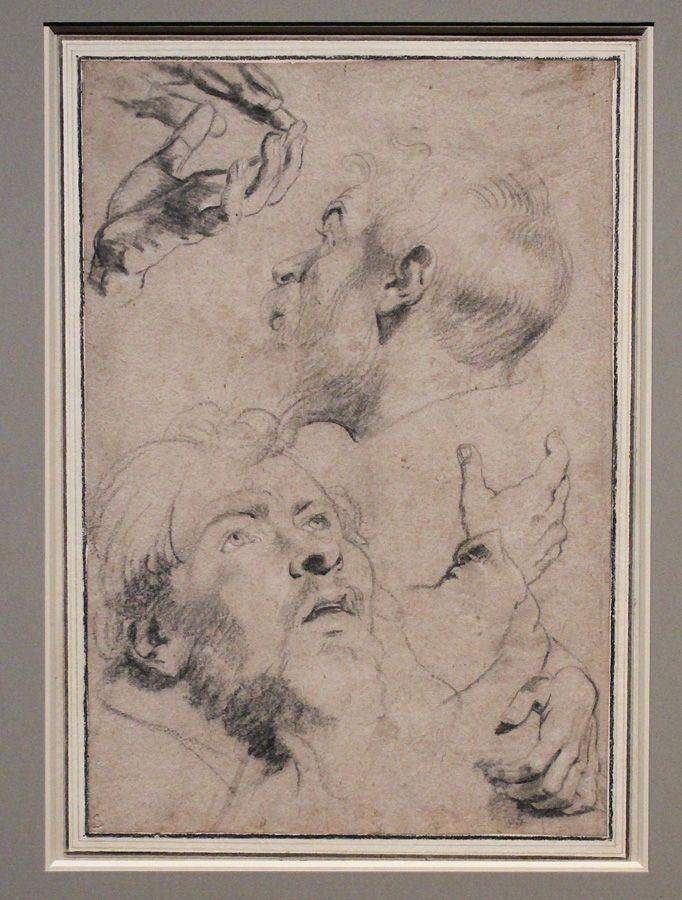 Peter Paul Rubens, Studienblatt mit vier Händen und zwei Männerköpfen, um 1613, Kreide, Installationsansicht in der Albertina, Foto: Alexandra Matzner.