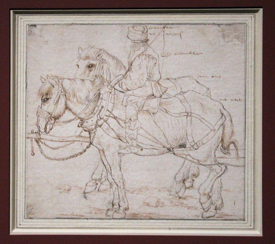 Roelant Savery, Das Gespann, um 1600, Feder, Installationsansicht in der Albertina, Foto: Alexandra Matzner.