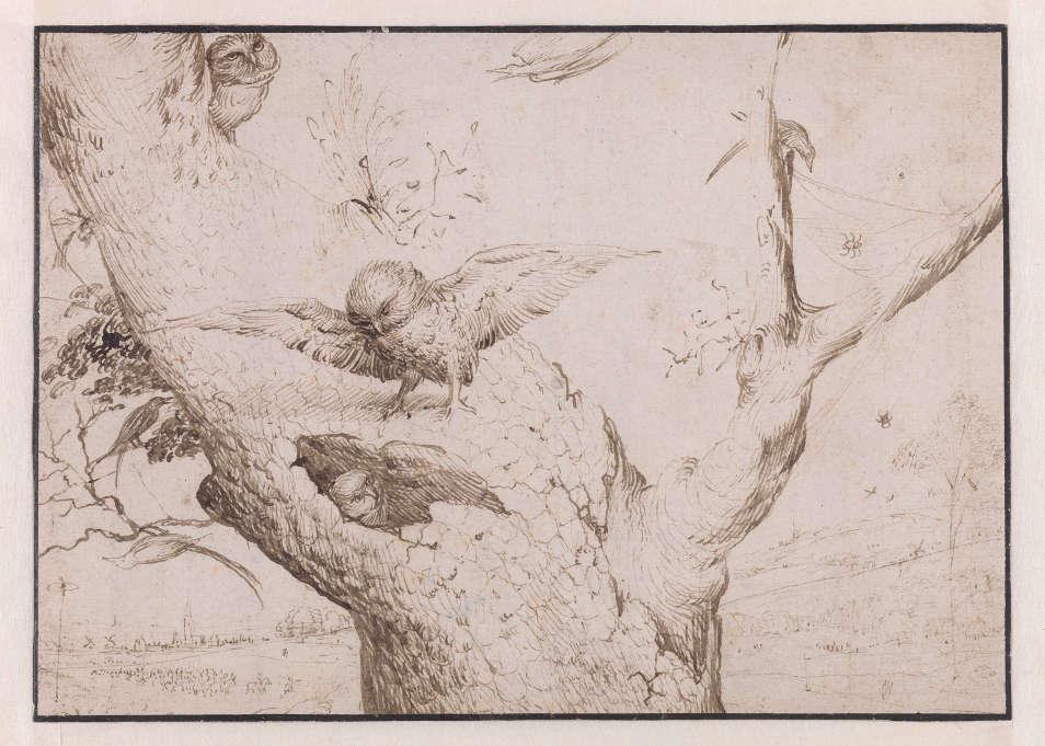 Hieronymus Bosch, Das Eulennest, 1505–1515, Feder, braune und grau-braue Tinte, 140 x 196 mm (Rotterdam, Museum Boijmans Van Beuningen/Koenigs Collection)