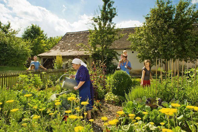 Blühende Bauerngärten auf rund 22 ha im Museumsdorf Niedersulz © NÖ Werbung/ Rita Newman,